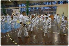 Egzamin-na-stopnie-szkoleniowe-kyu-25-stycznia-2014-_861667