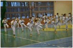 Egzamin-na-stopnie-szkoleniowe-kyu-25-stycznia-2014-_861858