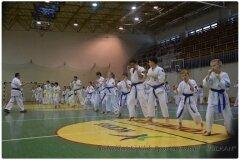 Egzamin-na-stopnie-szkoleniowe-kyu-25-stycznia-2014-_862837