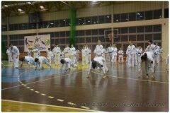 Egzamin-na-stopnie-szkoleniowe-kyu-25-stycznia-2014-_863317