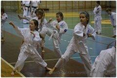 Egzamin-na-stopnie-szkoleniowe-kyu-25-stycznia-2014-_864530