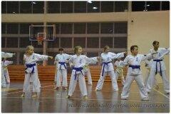 Egzamin-na-stopnie-szkoleniowe-kyu-25-stycznia-2014-_864919