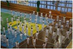 Egzamin-na-stopnie-szkoleniowe-kyu-25-stycznia-2014-_867103