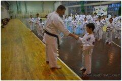 Egzamin-na-stopnie-szkoleniowe-kyu-25-stycznia-2014-_867718