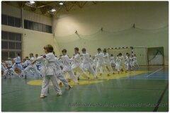 Egzamin-na-stopnie-szkoleniowe-kyu-25-stycznia-2014-_86782