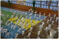 Egzamin-na-stopnie-szkoleniowe-kyu-25-stycznia-2014-_868603