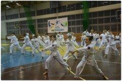 Egzamin-na-stopnie-szkoleniowe-kyu-25-stycznia-2014-_868865