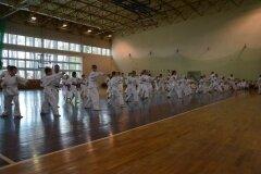 Egzamin-na-stopnie-szkoleniowe-kyu---Kozienice-16062013_831322