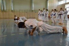 Egzamin-na-stopnie-szkoleniowe-kyu---Kozienice-16062013_831740
