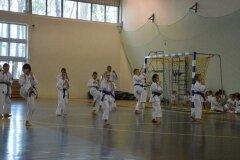 Egzamin-na-stopnie-szkoleniowe-kyu---Kozienice-16062013_832297