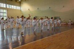 Egzamin-na-stopnie-szkoleniowe-kyu---Kozienice-16062013_833340