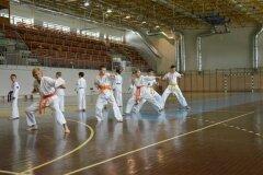 Egzamin-na-stopnie-szkoleniowe-kyu---Kozienice-16062013_834034