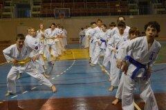 Egzamin-na-stopnie-szkoleniowe-kyu-Kozienice-2013_751616