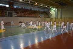 Egzamin-na-stopnie-szkoleniowe-kyu-Kozienice-2013_752468
