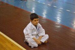 Egzamin-na-stopnie-szkoleniowe-kyu-Kozienice-2013_752985
