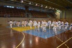Egzamin-na-stopnie-szkoleniowe-kyu-Kozienice-2013_753570