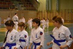 Egzamin-na-stopnie-szkoleniowe-kyu-Kozienice-2013_754134