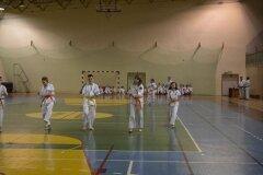 Egzamin-na-stopnie-szkoleniowe-kyu-Kozienice-2013_754823