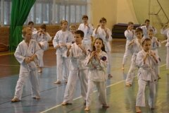 Egzamin-na-stopnie-szkoleniowe-kyu-Kozienice-2013_754872