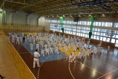 Egzamin-na-stopnie-szkoleniowe-kyu-Kozienice-2013_755188