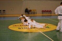 Egzamin-na-stopnie-szkoleniowe-kyu-Kozienice-2013_758269