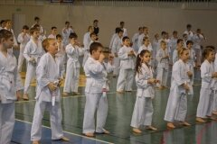Egzamin-na-stopnie-szkoleniowe-kyu-Kozienice-2013_758621