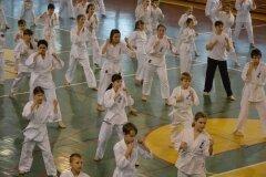Egzamin-na-stopnie-szkoleniowe-kyu-Kozienice-2013_759786