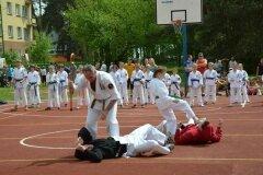 """IX-Festyn-Rodzinny-""""Trojki""""-18052013_824945"""