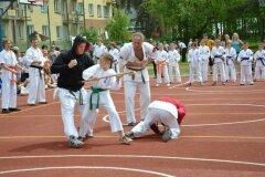 """IX-Festyn-Rodzinny-""""Trojki""""-18052013_827638"""