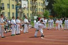 """IX-Festyn-Rodzinny-""""Trojki""""-18052013_827808"""