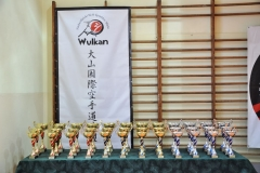 Mikolajkowy-Turniej-Oyama-Karate-w-konkurencji-kata-Garbatka--Letnisko-8122012-_731427