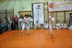 Mikolajkowy-Turniej-Oyama-Karate-w-konkurencji-kata-Garbatka--Letnisko-8122012-_731706