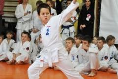 Mikolajkowy-Turniej-Oyama-Karate-w-konkurencji-kata-Garbatka--Letnisko-8122012-_73625