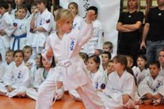 Mikolajkowy-Turniej-Oyama-Karate-w-konkurencji-kata-Garbatka--Letnisko-8122012-_738754