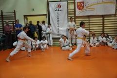 Mikolajkowy-Turniej-Oyama-Karate-w-konkurencji-kata-Garbatka--Letnisko-8122012-_738977