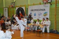 Mistrzostwa-Kozienic-Oyama-Karate-w-konkurencji-kata-19042013_817173