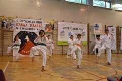 Mistrzostwa-Pionek-Oyama-Karate-w-konkurencji-kata-6052013_797796
