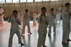 Mistrzostwa-Zwolenia-Oyama-Karate-w-Kata---2032013_761941
