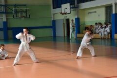 Mistrzostwa-Zwolenia-Oyama-Karate-w-Kata---2032013_764186