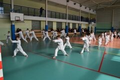 Mistrzostwa-Zwolenia-Oyama-Karate-w-Kata---2032013_769066
