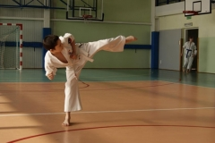 Mistrzostwa-Zwolenia-Oyama-Karate-w-konkurencji-kata_591441