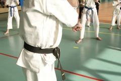 Mistrzostwa-Zwolenia-Oyama-Karate-w-konkurencji-kata_593224