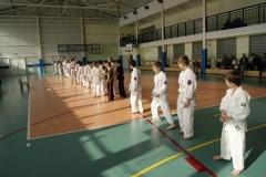 Mistrzostwa-Zwolenia-Oyama-Karate-w-konkurencji-kata_595488