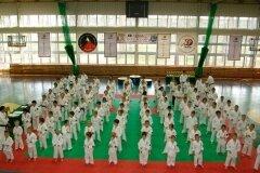 XIII-Turniej-NKSW-Wulkan-w-kata-9-czerwca-2012-r_656494