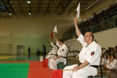 XIII-Turniej-NKSW-Wulkan-w-kata-9-czerwca-2012-r_656758