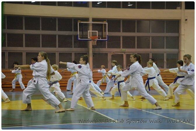 Egzamin na stopnie szkoleniowe kyu (25 stycznia 2014)
