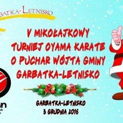 V Mikołajkowy Turniej Oyama Karate o Puchar Wójta Gminy Garbatka- Letnisko