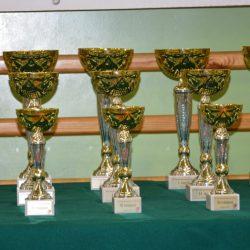 VI Turniej Sprawnościowy Karate, Kozienice 19 grudnia 2017 r.