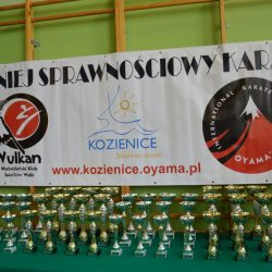 VII Turniej Sprawnościowy Karate, Kozienice 13 kwietnia 2018 r.