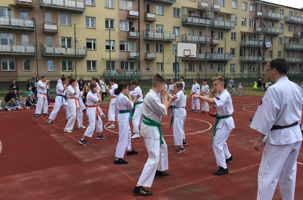 XIV Festyn Rodzinny Trójki- pokaz karate, 19 maja 2018 r.
